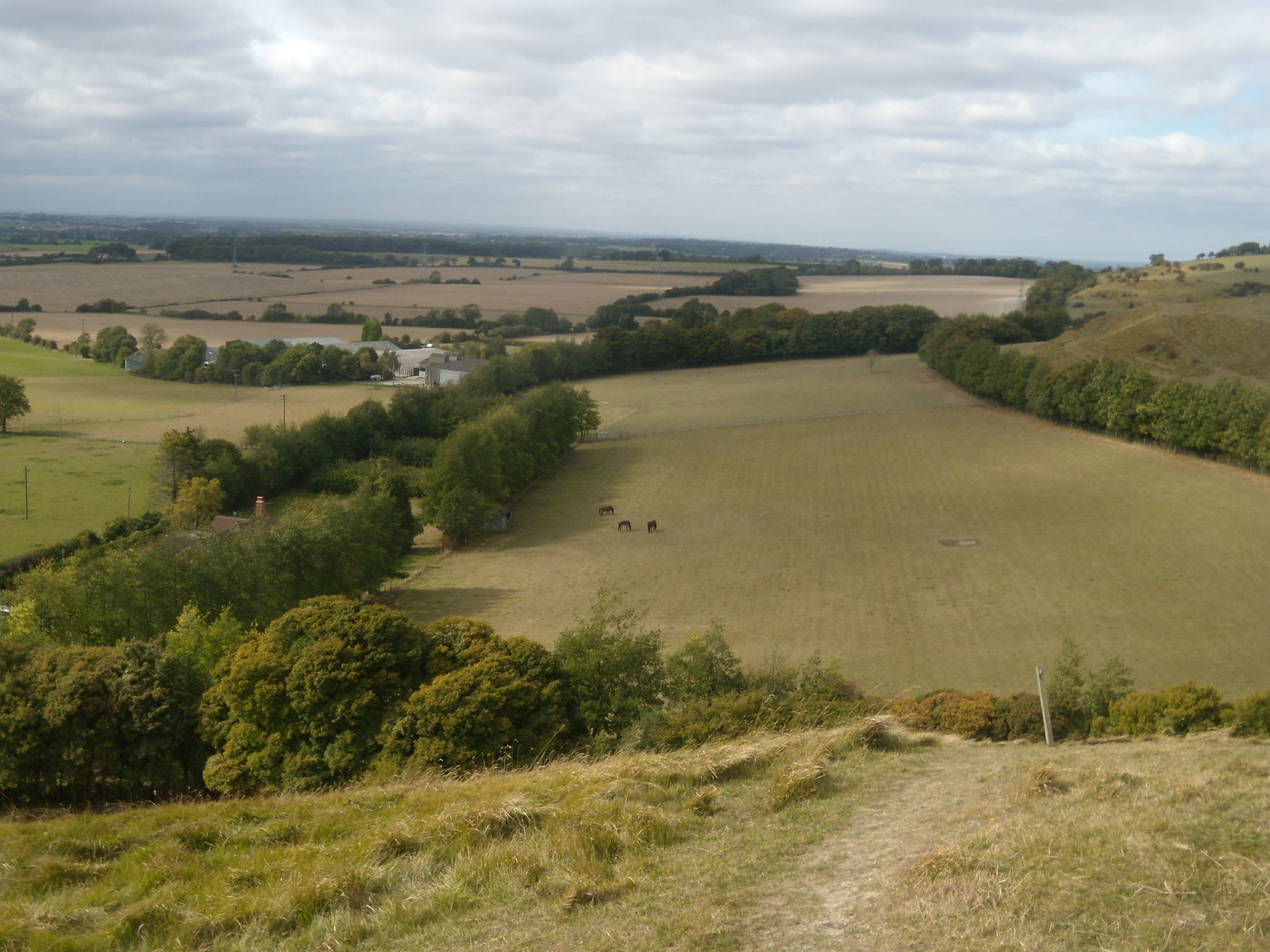 View Sandling to Wye