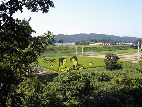 Rice Paddy Field Art in Yonezawa 2009