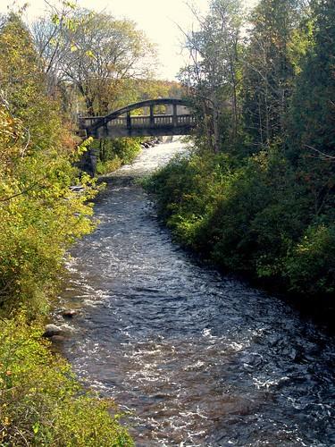 bridge autumn ontario canada stream arch durham holstein orchardville