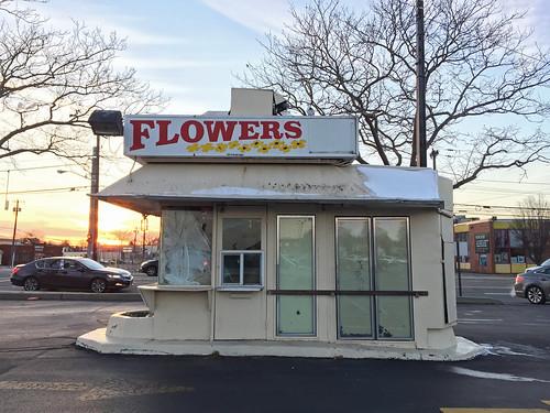 Flowers Kiosk; Herricks, New York