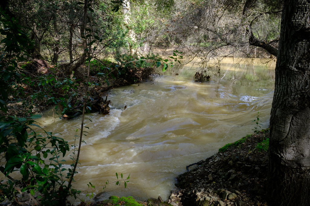 Anderson Dam Overflow 2348