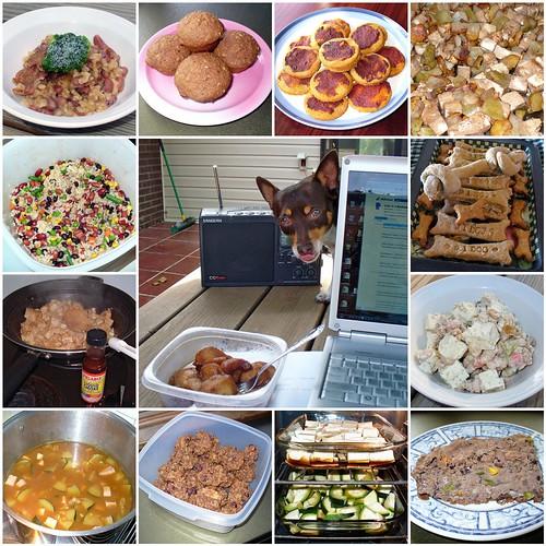 Vegan Food Mashup - 02 - My Dog-Kids' Food | by smiteme