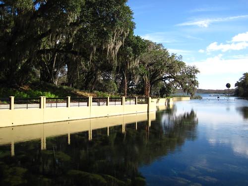 park forest florida salt springs ocala saltsprings