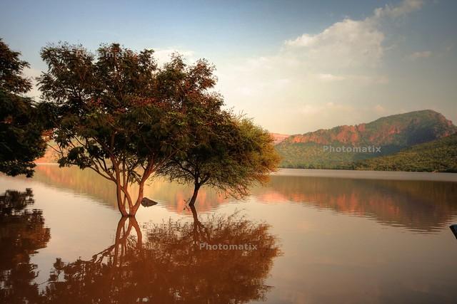 Mukambika Reflections