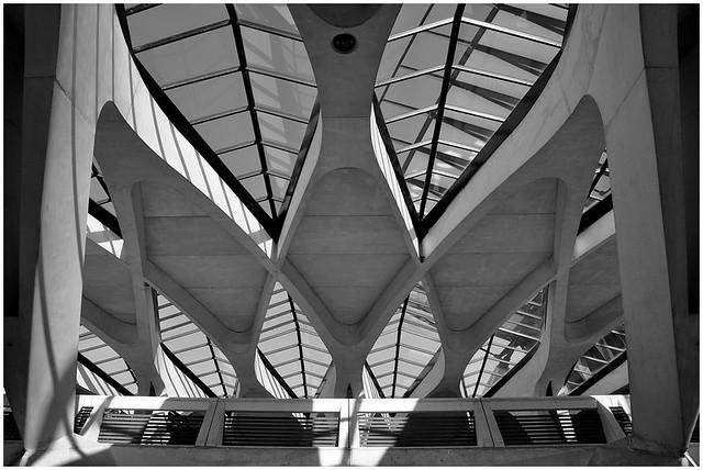 Calatrava Saint Exupery