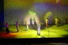 Ak Gulder Performance-97