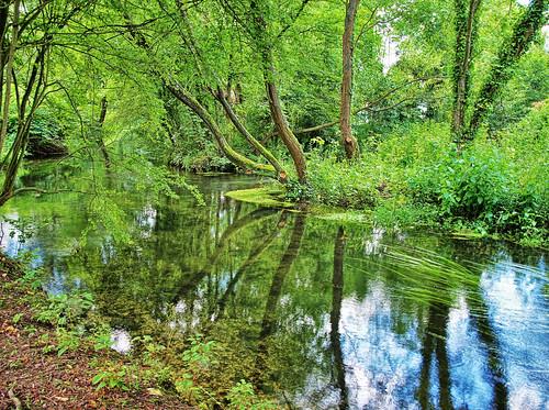 trees england reflection water river geotagged winchester itchen geo:lat=5106553 geo:lon=1307554 winnallmoorswinnallmoors