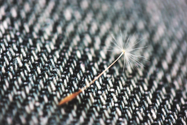 Nature uses only the longest threads to weave her patterns, so that each small piece of her fabric reveals the organization of the entire tapestry.