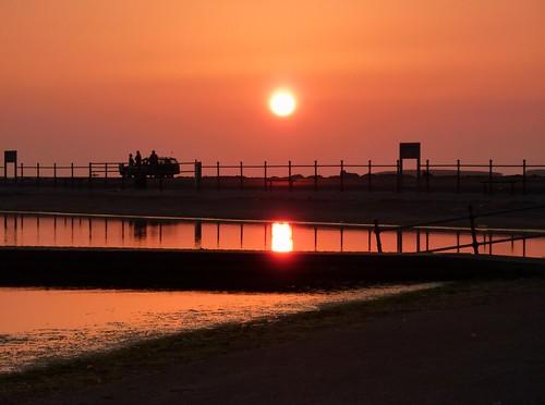 Sun In The Marina (17/04/2010)