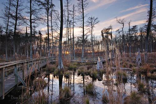 sunset reflection mississippi d70s swamp boardwalk cypress naturetrail sardis sigma1020 johnwkylestatepark kylestatepark clearspringsnaturetrail