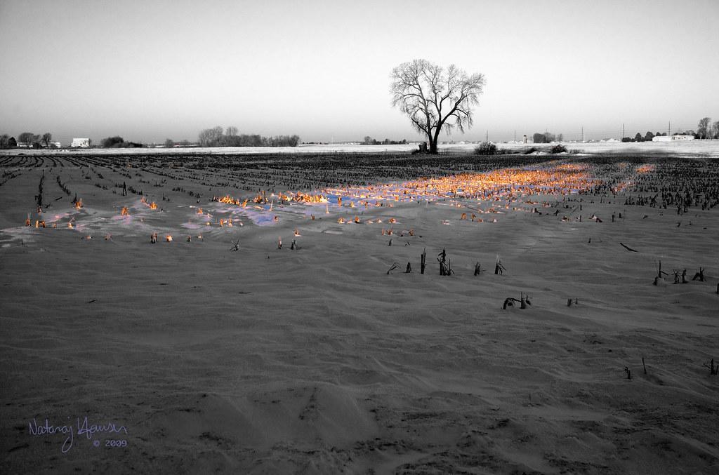 Winter Tree 1 by nataraj_hauser / eyeDance
