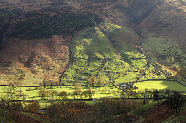 Lower slopes of Side Pike, Great Langdale, Lake District National Park, Cumbria, UK