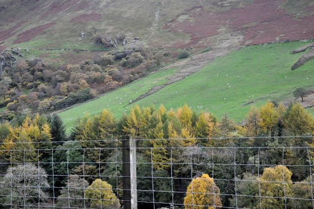 north Wales 9