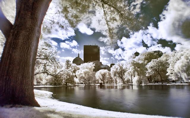 Boston Common in Infrared