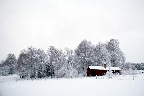 winter house snow cold tree field barn countryside sweden cottage farmland bålsta nikond80 nikkor18135mm