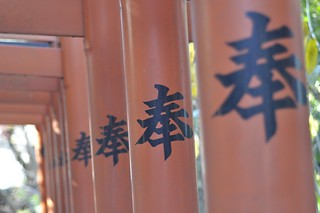 Ueno Park Torii ( detail ) | by Alex Carbune