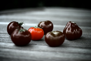 Tomato 1 | by sfxeric