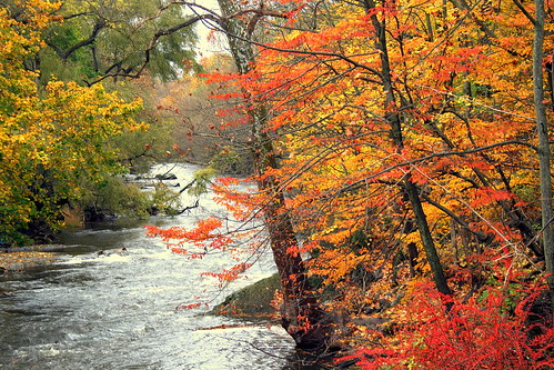autumn trees fall nature water landscape photography pennsylvania fallfoliage foliage pa northamptoncounty abigfave pennsylvaniafallfoliage thelehighvalley bestscenery fallfoliageinpennsylvania pafallfoliage foliageinpa foliageinpennsylvania fantasticautumn breathtakingscenerypictures