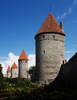 The towers of Tallinn | by Carlo Tancredi