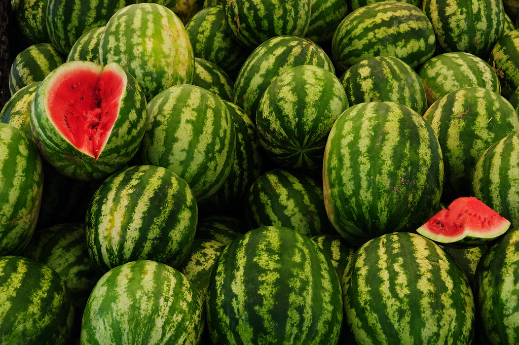World's Best Water Melons by christian.senger