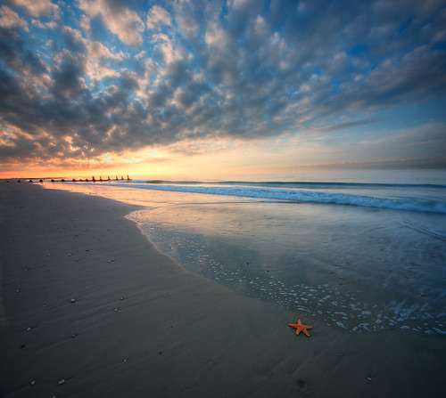 ocean beach sunrise dawn newjersey starfish nj atlantic capemay vertorama