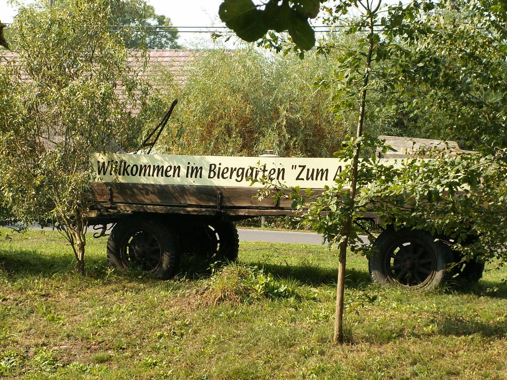 Womöglich liegt es daran, dass hier alle Badegäste herzlich willkommen sind im Biergarten an der Schleuse im Spreewald denn auch Buche und Eiche sind die natürlich vorkommenden Baumarten auf einem Großteil der Standorte 096