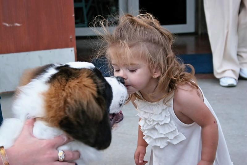Kisses for Bison