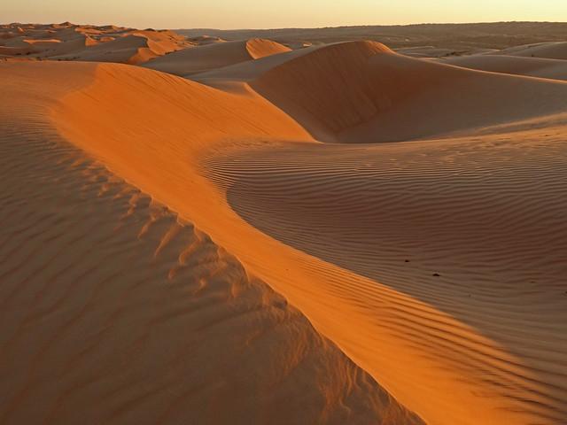 Desert lines (Oman)