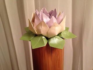 Eine einfache Origami Lotosblüte basteln: 14 Schritte (mit Bildern ... | 240x320