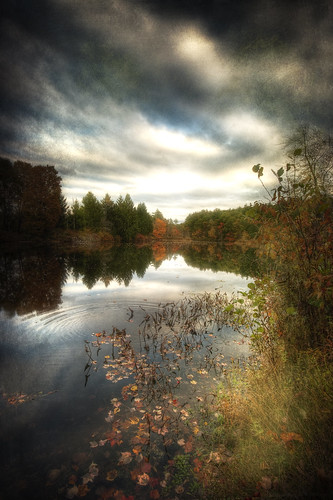 lake fall texture water leaves clouds rural photoshop canon reflections painting landscape pond october quiet cloudy dusk ripple massachusetts country digitalart newengland peaceful calm hdr dunstable sigma1020mm middlesexcounty 40d falllandscape patrickcampagnone
