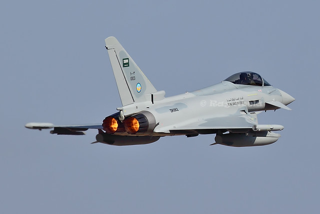 Royal Saudi Air Force (1003)