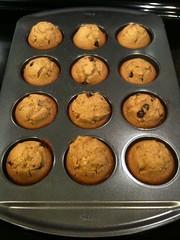 Pumpkin Chocolate Chip Muffins | by jugglerpm
