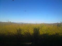 Plains of Sinaloa