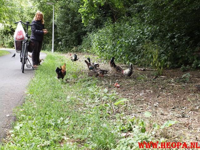 2015-06-20                Rijnsburg          35.5 Km (31)