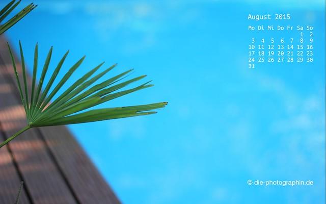 pool_august_kalender_die-photographin