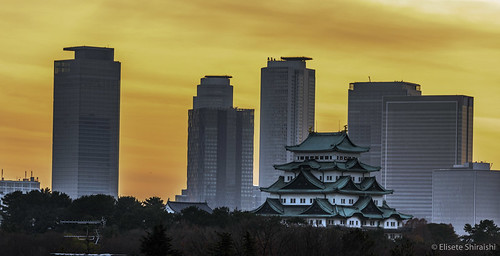 histórico japancastle beautifulscenery aichiken asian asiancontinent background japan landscape lr nagoyacastle nagoyashi nikon nikond750 noperson aichi colorful horizontal landmark outdoor outdoors postcard serenity sunset tranquilscene travel traveldestination urban urbanlandscape vacation japão panoramaurbano aoarlivre castelodenagoya 冬 雪 名古屋城 積雪 雪景 木々 青空 名古屋市 愛知 愛知県 天守閣 風景 中部地方 東海地方 屋外 城 日本 石垣 観光 名所 寒い