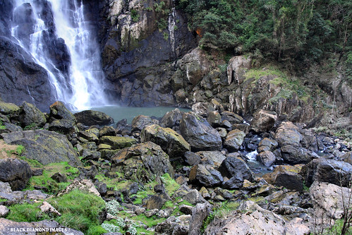waterfall australia falls waterfalls nsw wingham bdi ellenboroughfalls midnorthcoast elands manningvalley bulgaplateau elandswaterfall manningvalleytourism boorgannaflorareserve