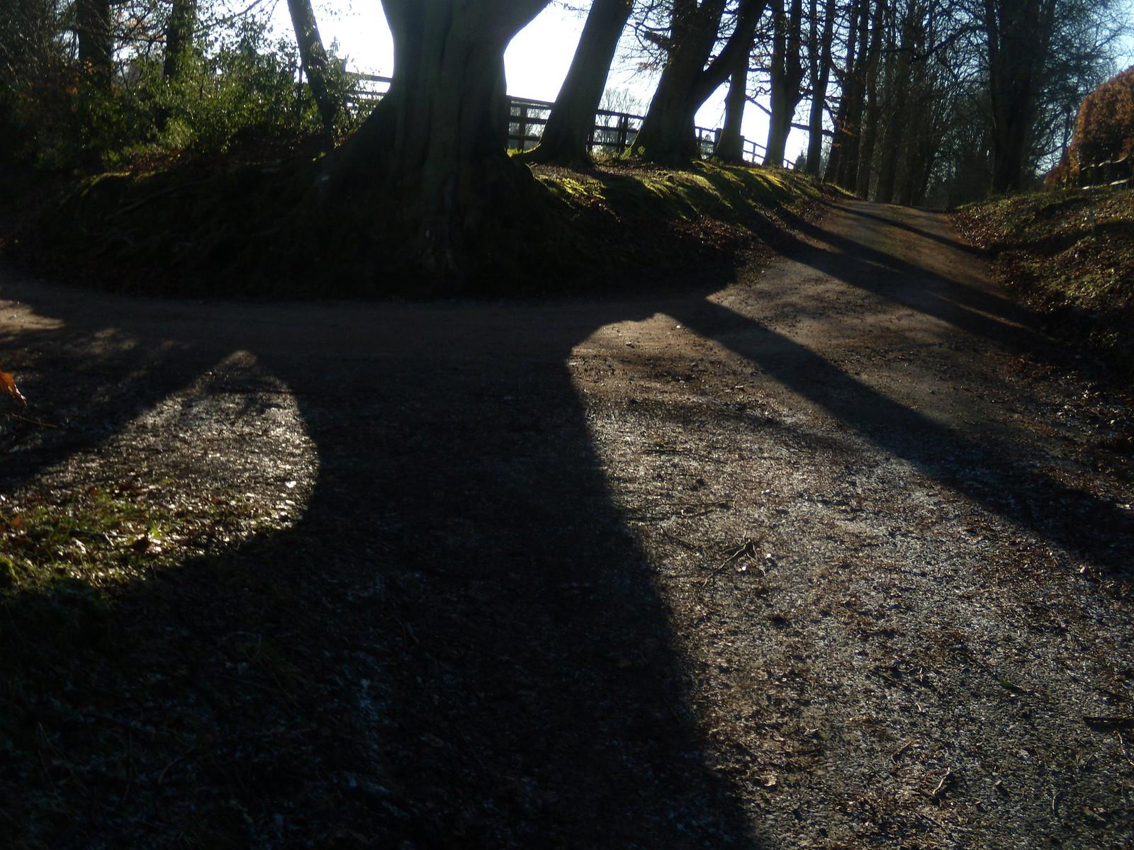 Shadders DSCN8291 Haslemere Round Walk