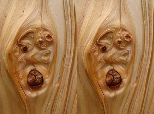 wood crosseye knot stereo tremblant