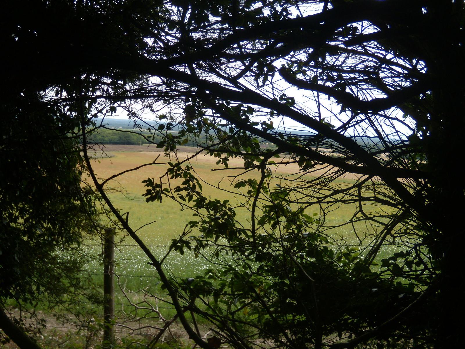 view Wanborough to Godalming