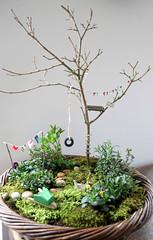 Mini garden | by ninimakes