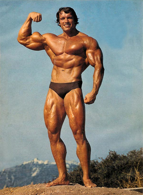 Mr  Olympia Arnold Schwarzenegger 1970-1975 | Peter Carwell