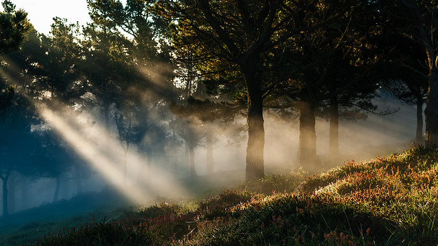 Una mañana de Octubre