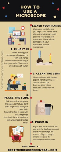 How to use a microscope step by step - Infographic