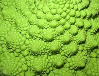 Fractal Vegetable   by Smabs Sputzer (1956-2017)