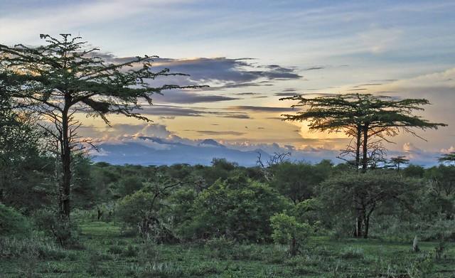 Selous scenery