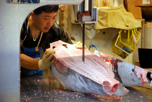 cutting tuna, tsukiji fish market   by hopemeng