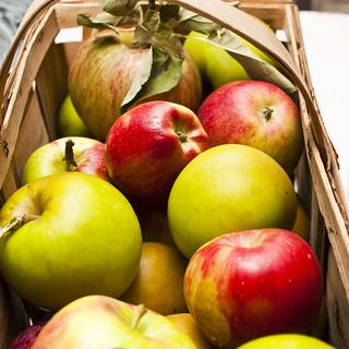 Grandpa's Apples | by ImNotQuiteJack