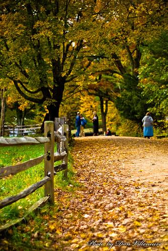 wood trees fall leaves fence ma nikon path 50mmf18 d80 oldesturbridgevillage