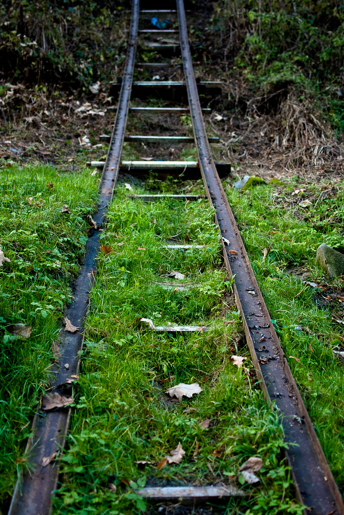 Kolej wąskotorowa / Narrow-gauge railway